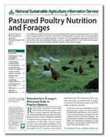 pasturedpoultrynutrition