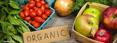 organic data
