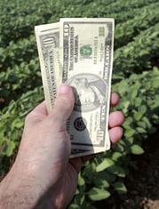 farm-grants_194